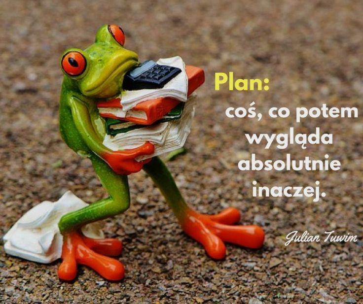Plan: coś, co potem wygląda absolutnie inaczej. - Julian Tuwim www.zostacpisarzem.pl