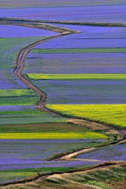 Umbria. Castelluccio. E' l'ora del blu  ♠ Repubblica.it - foto di Arturo Cocchi - click for more