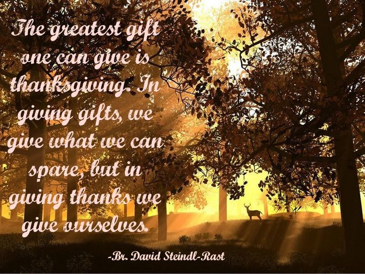 Br. David Steindl-Rast | German quotes, Words, Quotes
