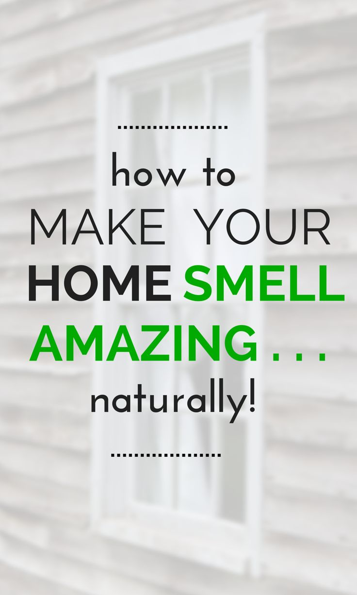 Tap here for loads of easy tips to be well on your way to the best smelling place on your block that is germ, toxin and allergen-free: TheHealthMinded.com #homesmell #health