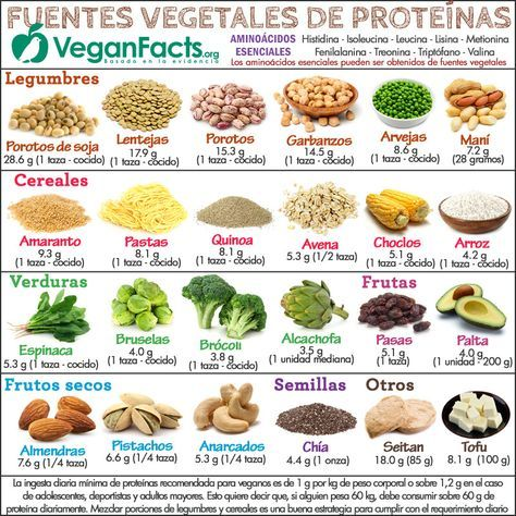 Fuentes de proteínas vegetales en la dieta vegana y vegetariana – Infografías | Nutrición Vegana, Alimentación y Veganismo
