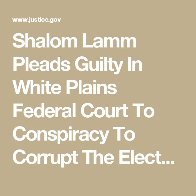 Shalom Lamm Pleads Guilty In White Plains Federal Court To Conspiracy To Corrupt The Electoral Process In Bloomingburg | USAO-SDNY | Department of Justice