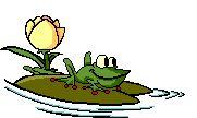 Gif żaba siedząca na liściu Żaby Zwierzęta