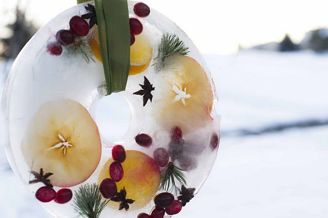 Ice Wreath Suncatcher with fruit ~ instruction included
