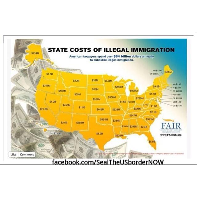 Illegal immigrants essay