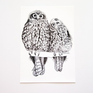 Archival Prints of all our hand drawn designs