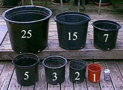 Pot Sizes Inches To Gallon Conversion Gardens Feeding