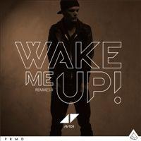 Avicii「Wake Me Up」。アヴィーチーの音楽
