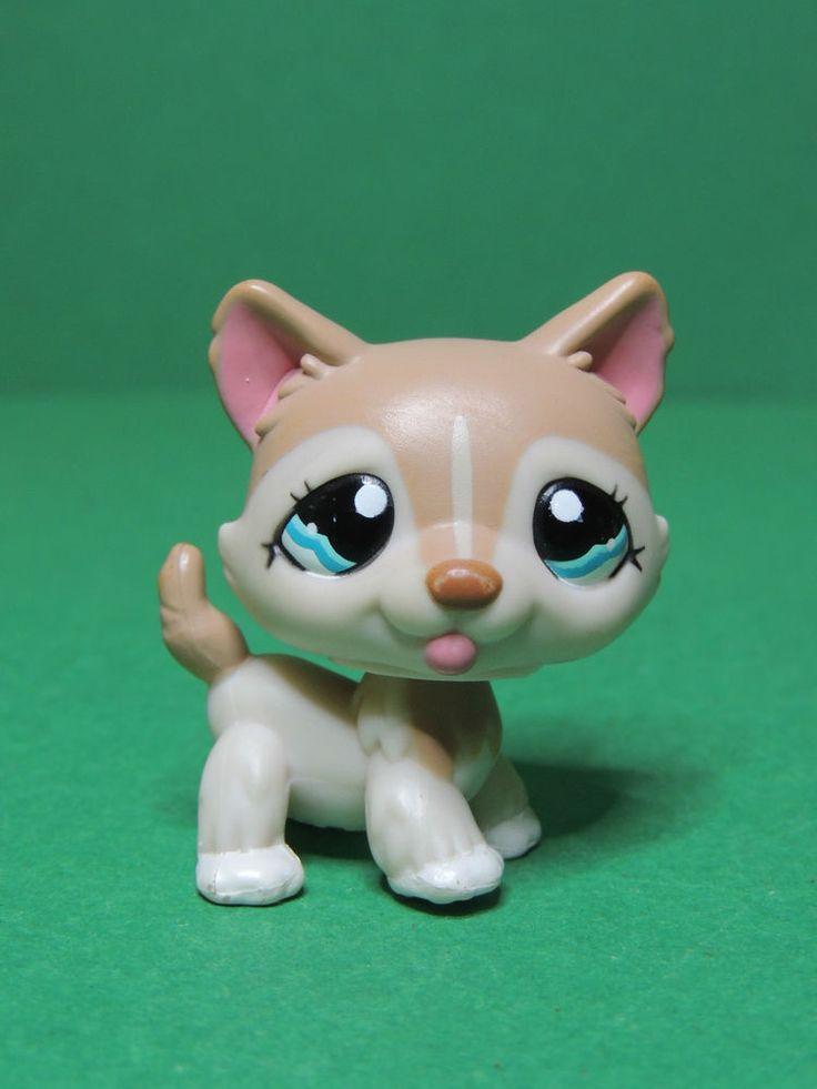 285 best jenna 39 s lps images on pinterest littlest pet - Chien pet shop ...