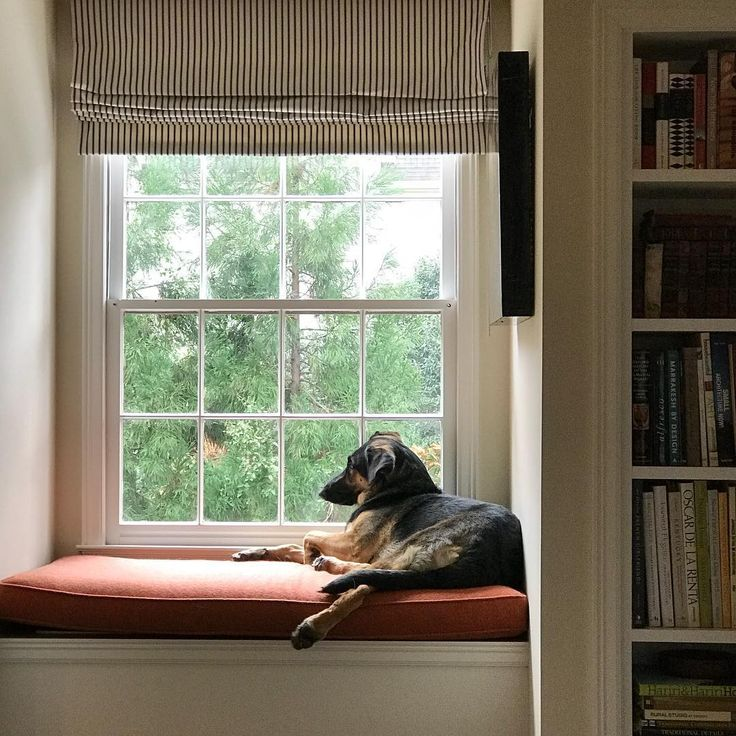 721 best window seats reading nooks images on pinterest for Reading nook cushion