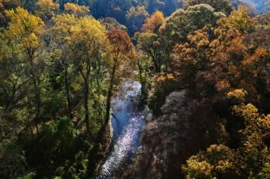 Rock Creek Foliage - Lucas Keene/Getty Images
