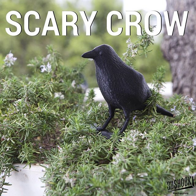 """@3dshookcollections's photo: """"Crow garden ornament. A completely natural pigeon repellent for windows, balconies and backyards alike. They say a crow always remembers...SCARY!Check us out at www.3dshook.com #PrintEverything #makers #makeraddictz #3dprint #3dmodels #3dprinter #3dprinting #crow #edgarallenpoe #garden #ornament #Decor #hitchcock #scarecrow"""""""