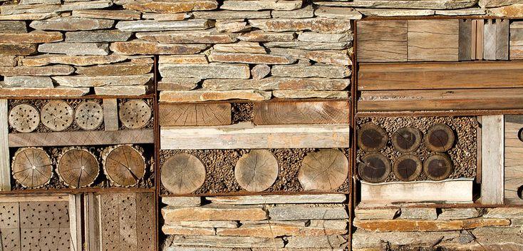 Tutto sul bug hotel! Come costruire e mettere in funzione la casa per gli insetti utili dell'orto biologico! La guida pratica da leggere!