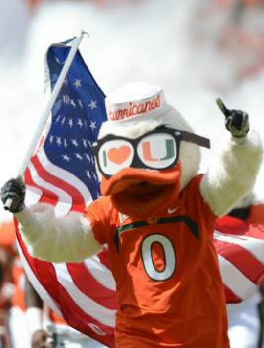 1000 Images About It S All About The U Miami Hurricanes