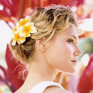 St. Croix native frangipani for wedding hair