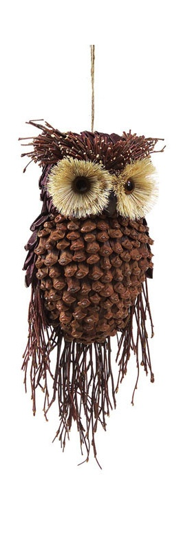Pine cone owl...can make this!