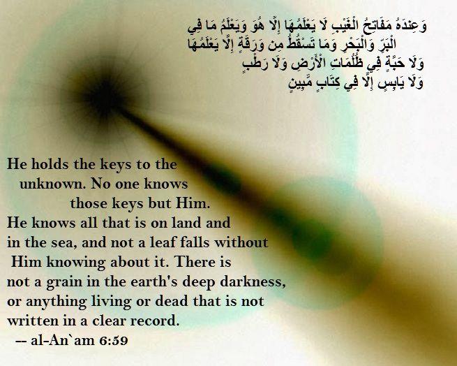 http://islamawakened.com/index.php/today-s-ayat/1838-2016-12-07-08-rabi-al-awwal-1438