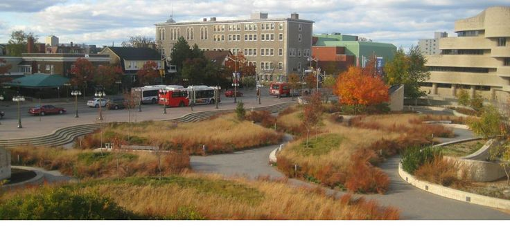 1000 images about plaza square on pinterest for Landscape architecture canada