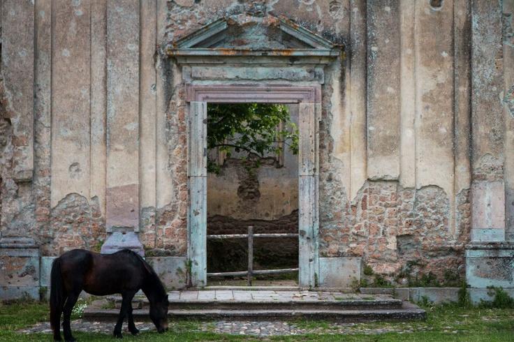 Chiesa di San Bonaventura, Monterano, Italy. Photo by Piero Persello #horse #ruins #countryside #film #set  more info: http://it.wikipedia.org/wiki/Monterano