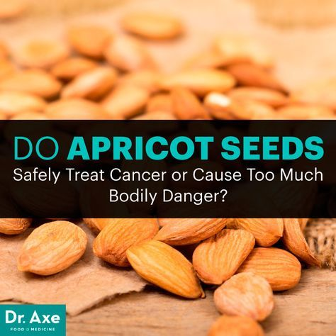 Apricot seeds - Dr. Axe