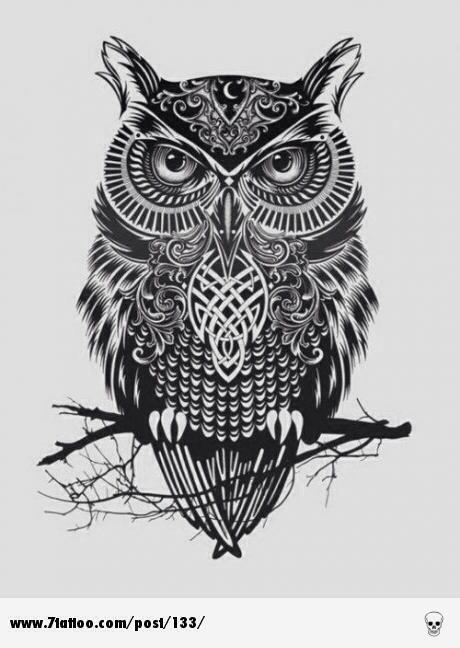 Owl .. coruja .. tattoo