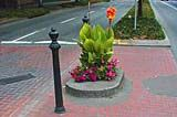Mill Ends Park in downtown Portland is the smallest park in the world according to the Guinness Book of Records. The park is a circle two feet across.