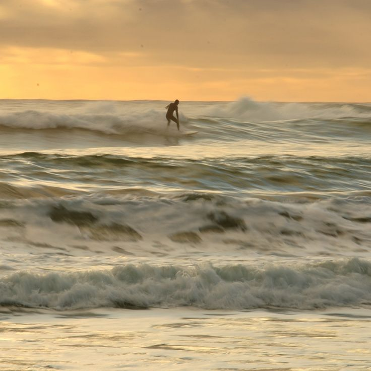 surfer at Omanu beach, Bay of Plenty, NZ