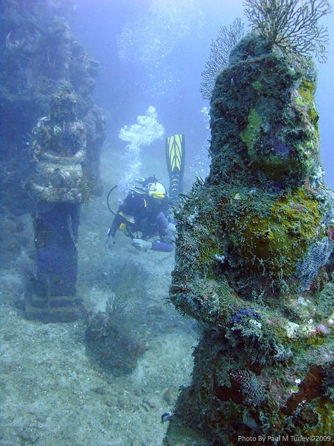 Underwater temple garden, Pemuteran Bay, Bali. I may have to learn how to scuba dive!
