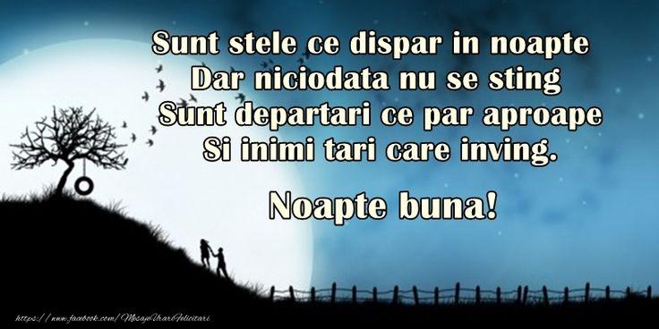 Sunt stele ce dispar in noapte, Dar niciodata nu se sting, Sunt departari ce par aproape, Si inimi tari care inving, Noapte buna