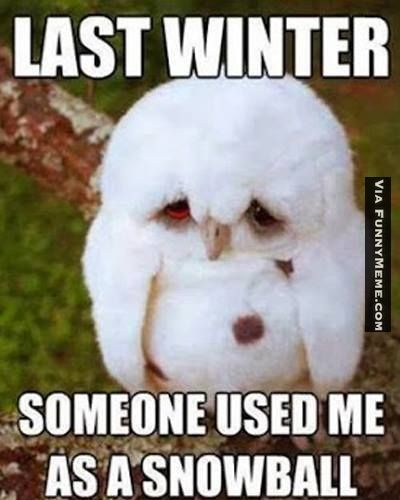 The Best Winter Memes Collection - Winter Sucks!