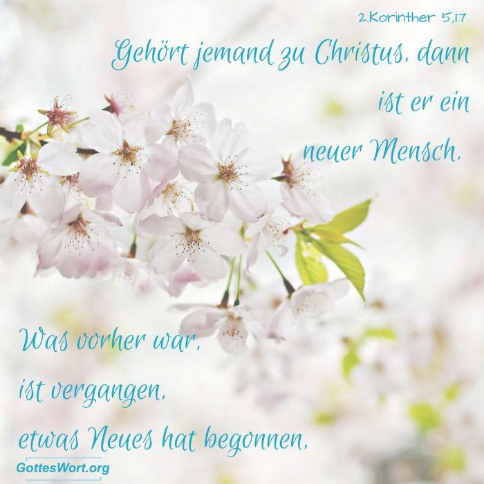 Etwas neues wurde angenommen...davon schrieb der Paulus in 2.Korinther 5,17 ... Lese mehr: http://www.gottes-wort.com/erquicken-28.html