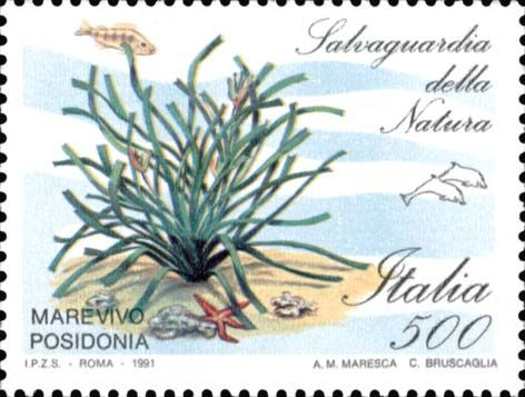 """1991 - """"Salvaguardia della natura"""": Marevivo Posidonia"""