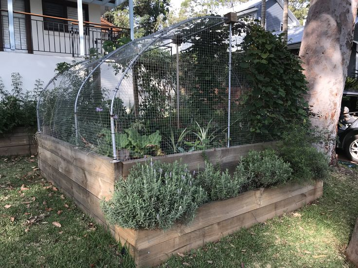 Planning, building and refining a raised garden wicking