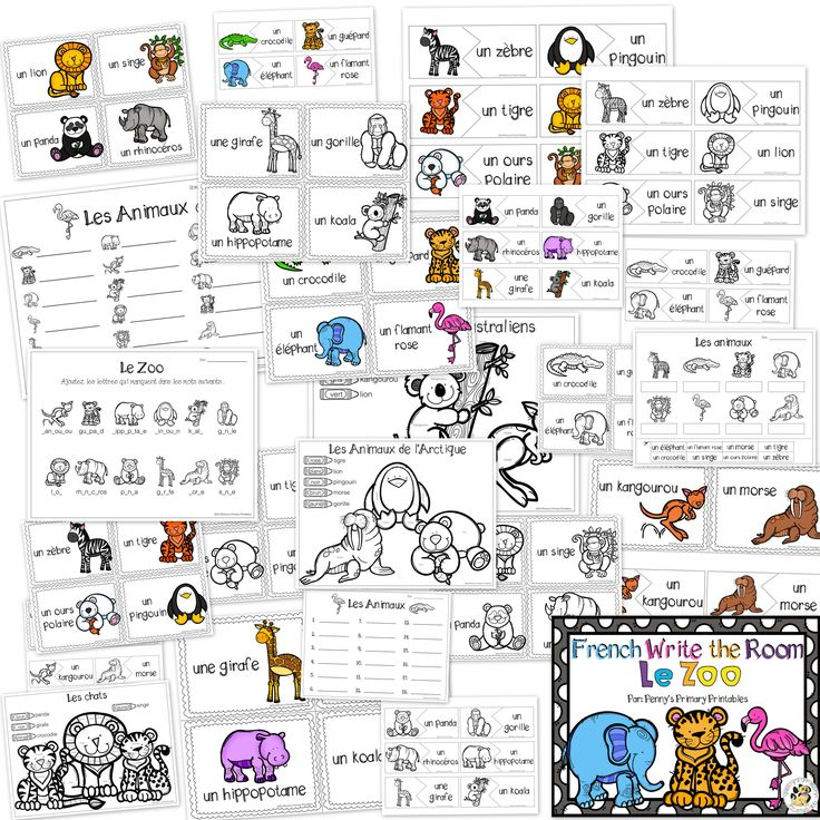 zoo in french language Resources and links related to cher zoo | see more ideas about french class, french classroom and french language learning resources and links related to cher zoo  the french language is completely predictable if you practice french daily find this pin and more on destinations by travel waiting.