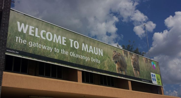 A lion's welcome for passengers arriving at Maun International Airport in Botswana