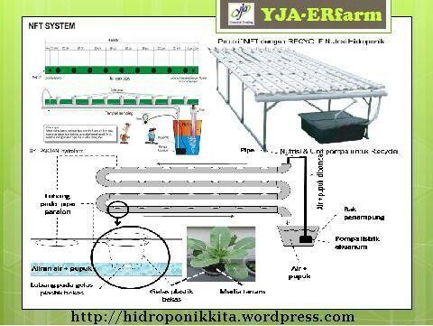 Hydroponics system #YJA-ERfarm