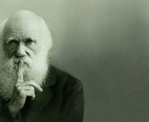 Charles DarwinThoughts, Remember This, Inspiration, Charles Darwin, Truths, Adaptations, Charlesdarwin, The One, Change Quotes