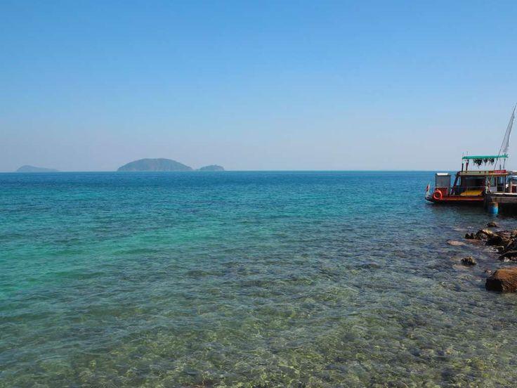 Fische in Kussabsicht   Thailand