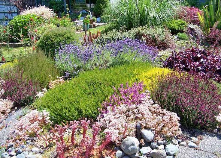 1000 id es sur le th me plantes couvre sol sur pinterest rev tement de sol plantes vivaces et. Black Bedroom Furniture Sets. Home Design Ideas