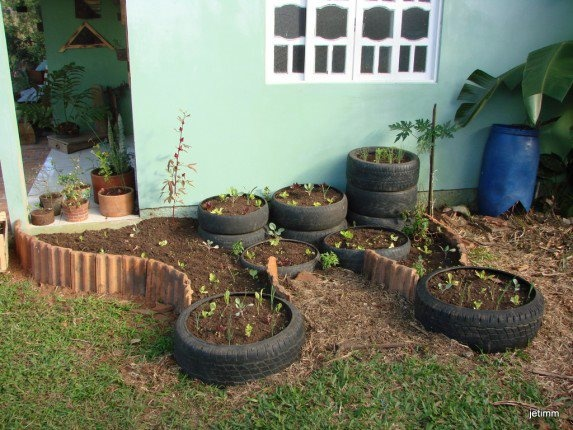 53 Best Images About Back To Eden Gardening On Pinterest Gardens Container Gardening And
