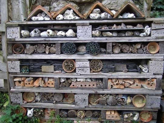 Making a Home for Bugs. Build a Wildlife Hotel for beneficial Insects - bees and ladybugs. Fun garden project idea.