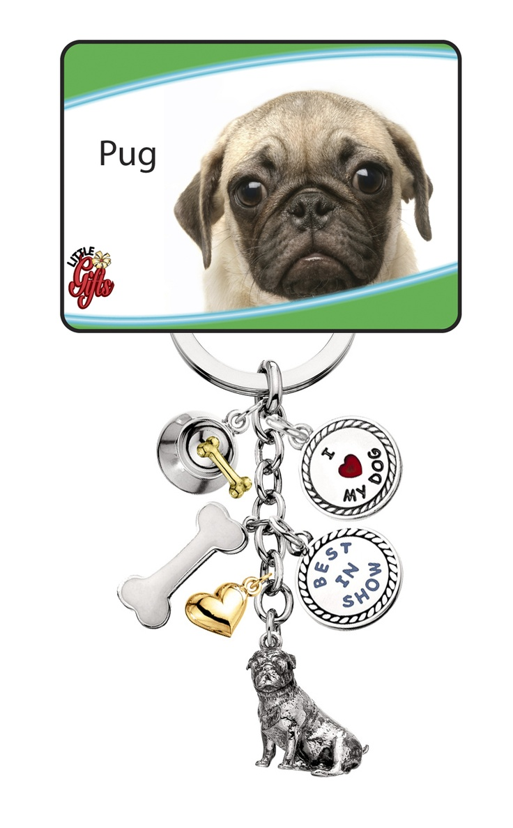 300 best pugs and pug items 3 finished images on pinterest pug key chain nvjuhfo Images