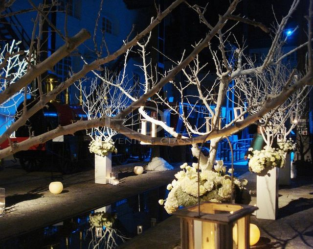 Magic Winter Light - Luxury Wedding - Eventi di Classe - Rosy Fusillo