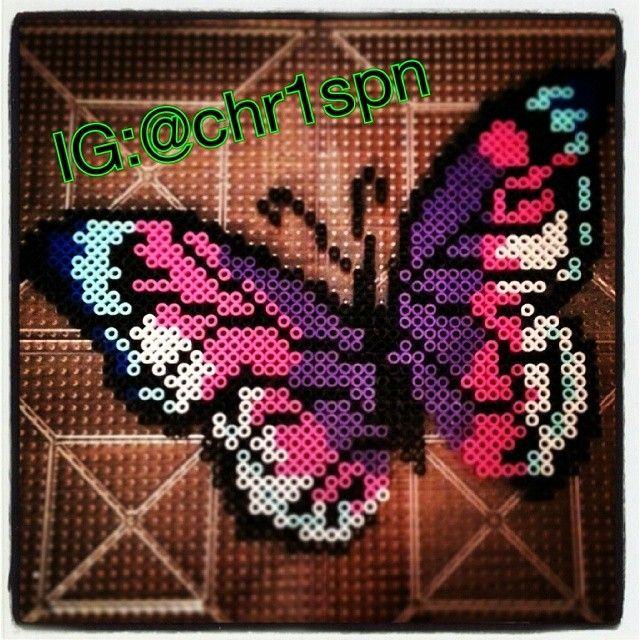 Butterfly perler beads by chr1spn
