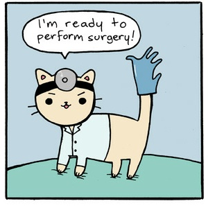 Doctor Cat ready to perform surgery