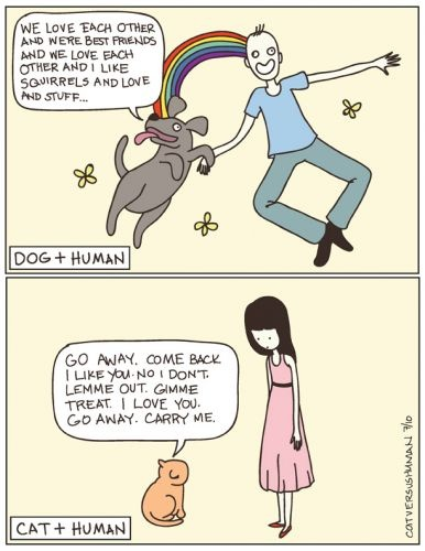 dogs vs cats :): Cat Vs Dog, Dogs And Cats, Dog Cat, Dogs Cat, I Love Cat, Crazy Cat, Cat Ladies, Cats And Dogs, Hate Cat
