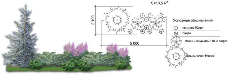 Сад - конструктор - Студия ландшафтного дизайна «Niceplant»