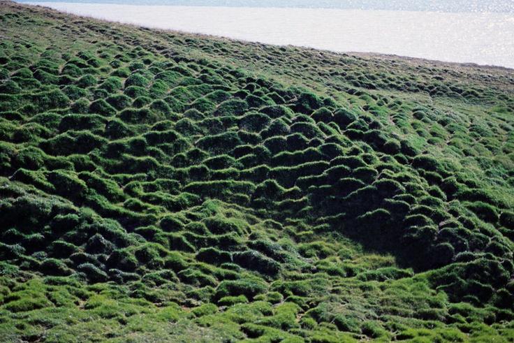 nunavut land area