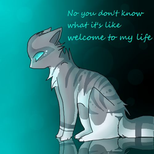 If you don't read Warriors, you wont get this. Jayfeather is blind.