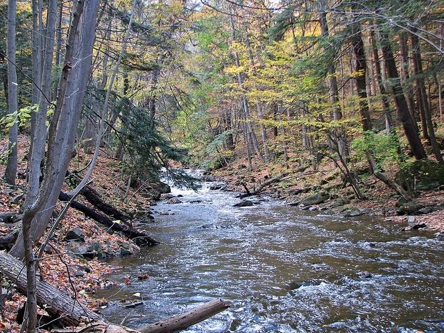 Spencer Creek below Webster's Falls, Hamilton Ontario